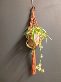 Rust Plant Hanger  Medium